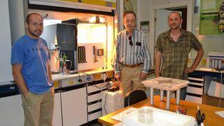 El catedrático de la Universidad de Almería Tomás Cabello, en el centro, con investigadores de su equipo que trabajan en el control biológico de plagas.